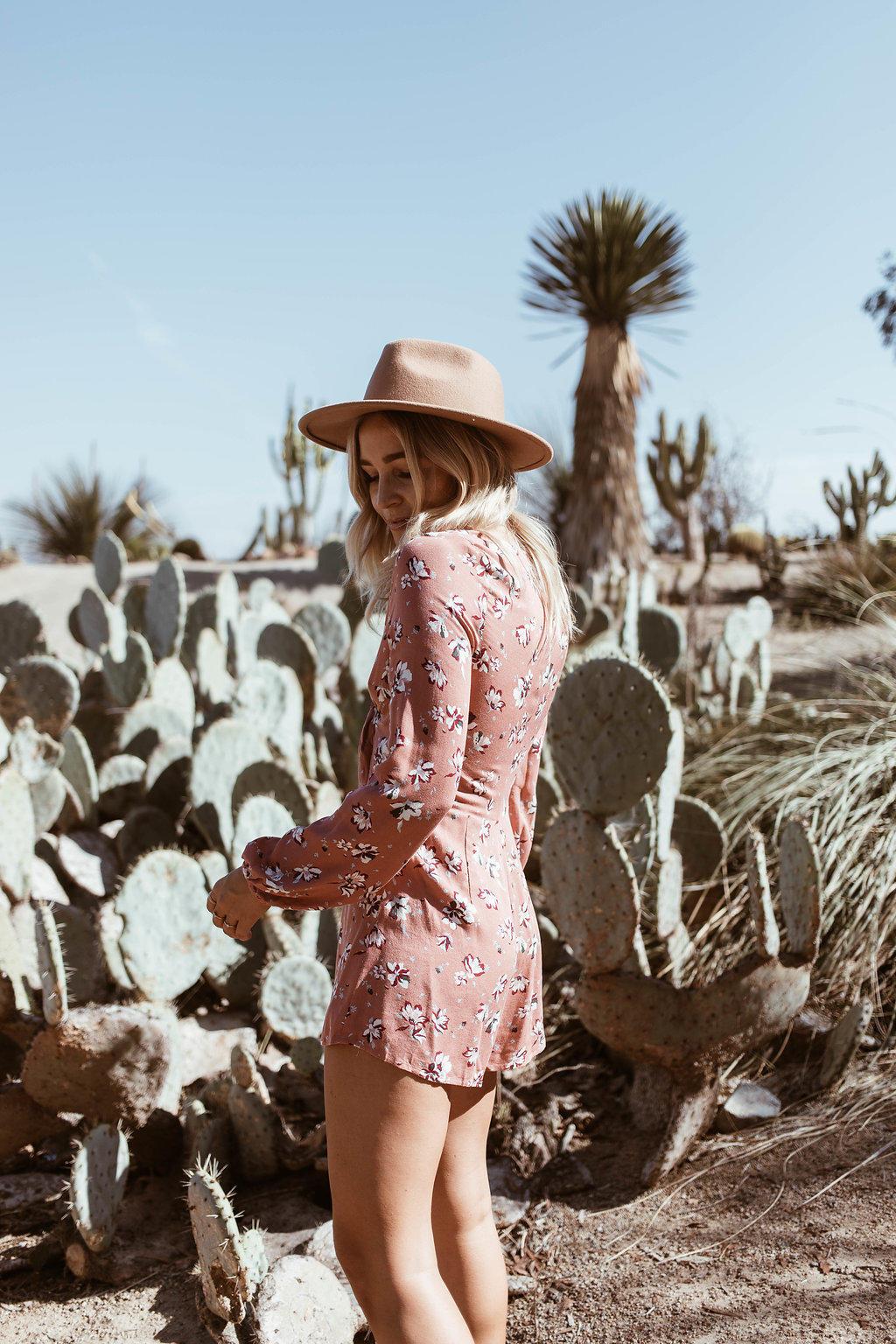 balboa park cactus garden